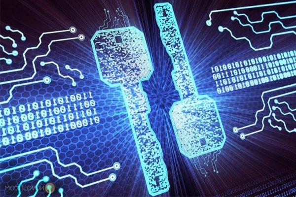 Криптохвост в ИС Маркировка
